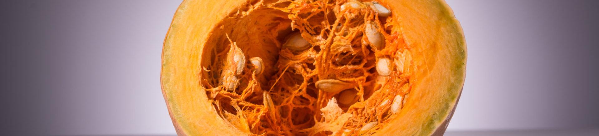 Kürbis Kürbishof Kürbiskernöl Speisekürbis Zierkürbisse Kürbiskernpesto Fruchtaufstrich Rapsöl Erdäpfel Vogelfutter Bio Metz Landwirt Kürbishofladen Mostviertel Haag Amstetten